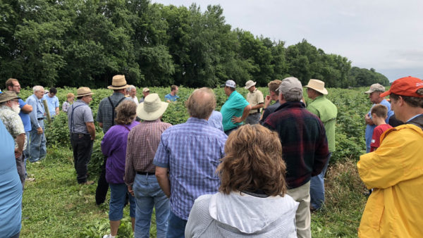 Successful Summer Field Day at Garwoods