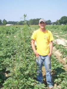 Picture of Stephen Meyer standing next to a Palmer amaranth plant in sweetpotato research plots in North Carolina, 2007.