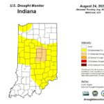 Figure 1. US Drought Monitor conditions for Indiana as of 24 August 2021.